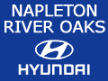 Napleton Hyundai