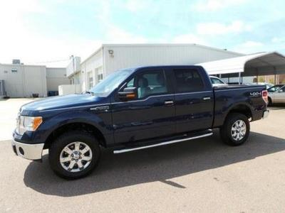 2013 Ford F150 Crew Cab Pickup for sale in Columbus for $31,527 with 43,762 miles.