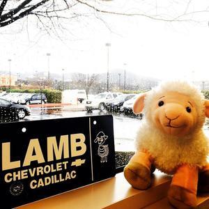Lamb Nissan Chevrolet Cadillac in Prescott including address, phone