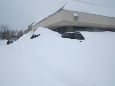Exeter Subaru Image 9