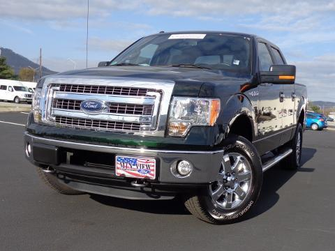 2013 Ford F150 XLT Crew Cab Pickup for sale in Chattanooga for $35,000 with 14,807 miles
