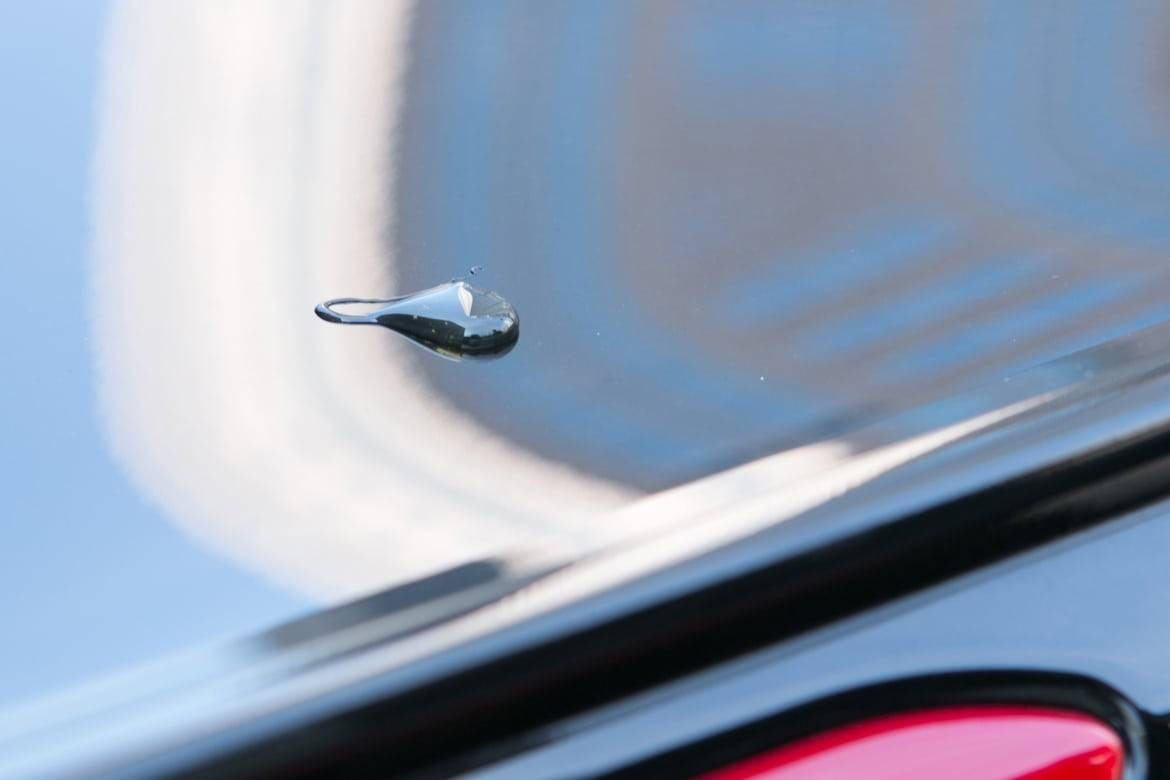 Droplet of tree sap on the body of a car