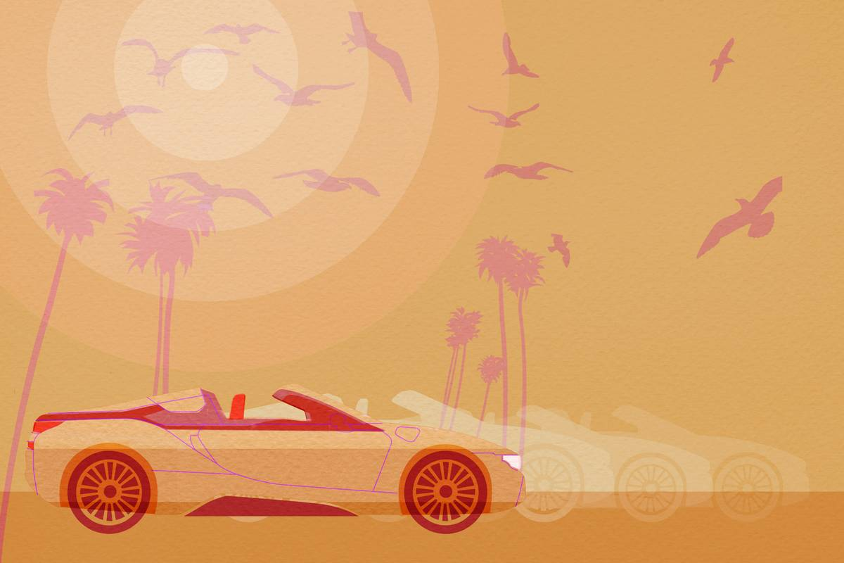 An illustration of a car birds and palm trees