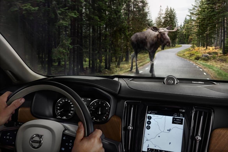 Volvo_Large_Animal_Detection_Interior.jpg
