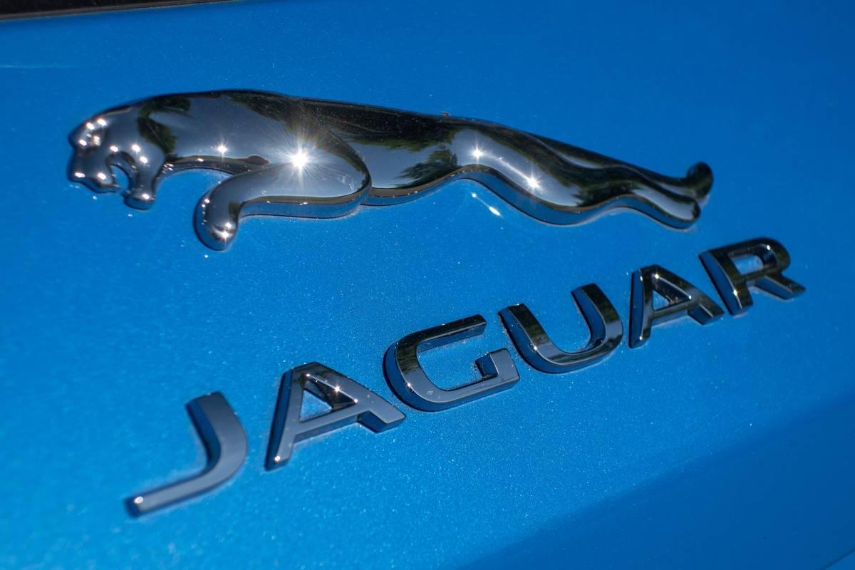 jaguar-f-pace-svr-2019-09-badge--blue--exterior--rear.jpg