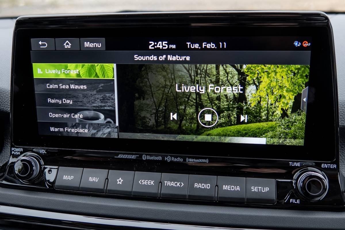 kia-seltos-2021-30-audio-system--center-stack-display--front-row--interior.jpg