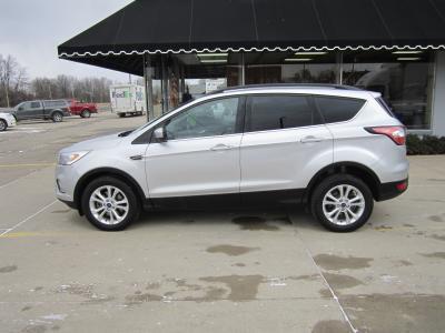 2017 Ford Escape SE for sale VIN: 1FMCU9GD7HUC54092