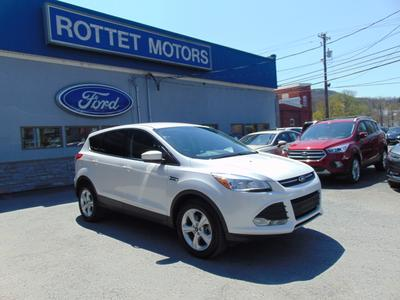 2014 Ford Escape SE for sale VIN: 1FMCU9GX4EUA66149