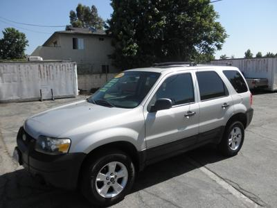 2006 Ford Escape XLT for sale VIN: 1FMYU03156KB77793