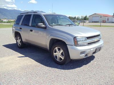 2007 Chevrolet TrailBlazer LS for sale VIN: 1GNDT13S672235830