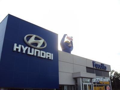 Fuccillo Hyundai Of Grand Island Image 1