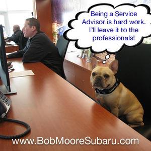 Bob Moore Subaru Image 1