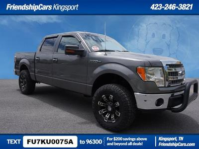 Ford F-150 2013 for Sale in Johnson City, TN