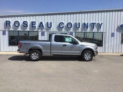 Ford F-150 2020 for Sale in Roseau, MN