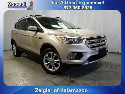 Ford Escape 2018 for Sale in Kalamazoo, MI