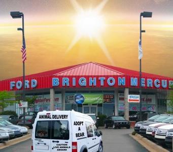 Brighton Ford Image 1
