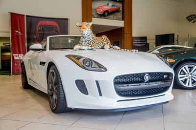 Rusnak/Pasadena Jaguar Image 1