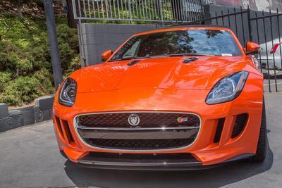 Rusnak/Pasadena Jaguar Image 2