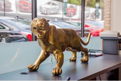 Rusnak/Pasadena Jaguar Image 7
