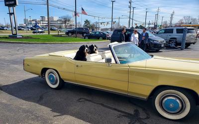 Crestmont Cadillac Image 8