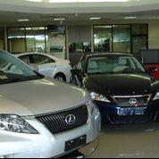 Pohanka Lexus Image 5