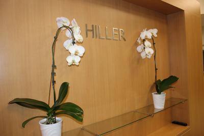Hiller Ford Image 4