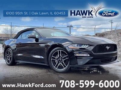 Cars For Sale At Hawk Ford Of Oak Lawn In Oak Lawn Il Auto Com