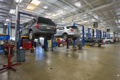 AutoNation Ford Wolfchase Image 7
