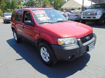 2006 Ford Escape XLT Sport for sale VIN: 1FMYU03116KC42493