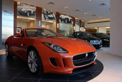 Jaguar Cary Image 2