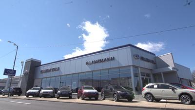 Glanzmann Subaru Image 2