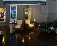 Jaguar of Tampa Image 1