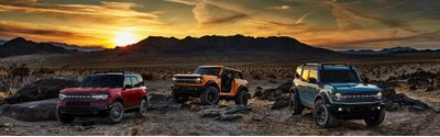 Winner Ford Image 6