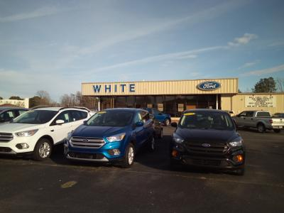 White Ford Image 1