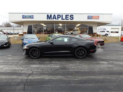 Maples Ford, Inc. Image 3