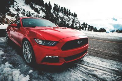 Allietta Ford Image 7