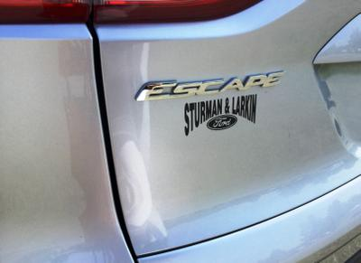 Sturman & Larkin Ford Image 2