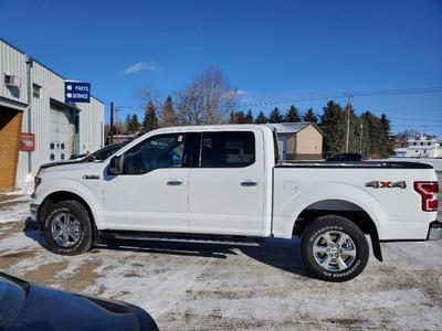 Ford F-150 2019 for Sale in Rugby, ND