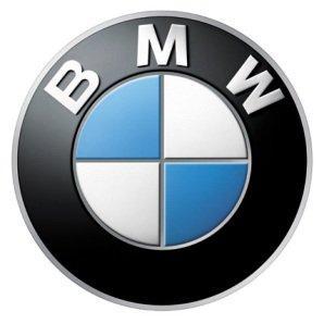 Checkered Flag BMW & Mini Image 1