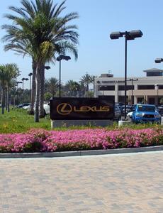 Newport Lexus Image 2