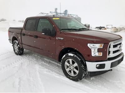 Ford F-150 2017 for Sale in Lu Verne, IA