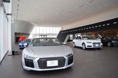 Audi Grapevine Image 5