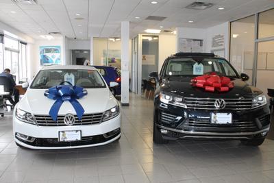 Teddy Volkswagen Image 8