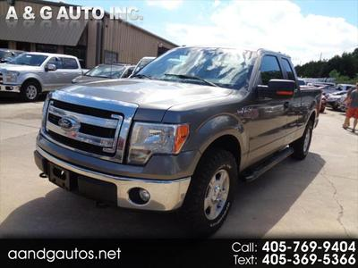 2013 Ford F-150 XLT for sale VIN: 1FTFX1EFXDFA21756