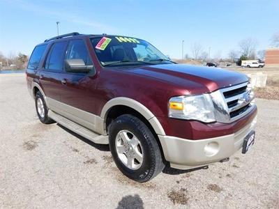 2009 Ford Expedition Eddie Bauer for sale VIN: 1FMFU18519EA78125