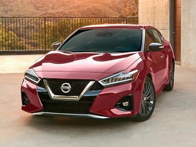 used 2020 Nissan Maxima car